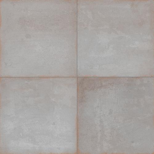 Barro Grey