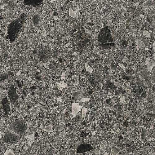 Fossil Ceppo Dark 80x80cm