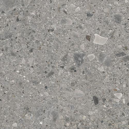 Fossil Ceppo Grey 120x120cm