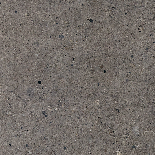 Fossil Dark 30x60cm