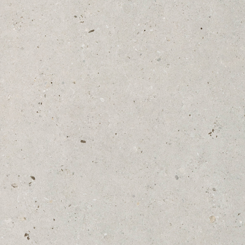Fossil Grey 30x60cm
