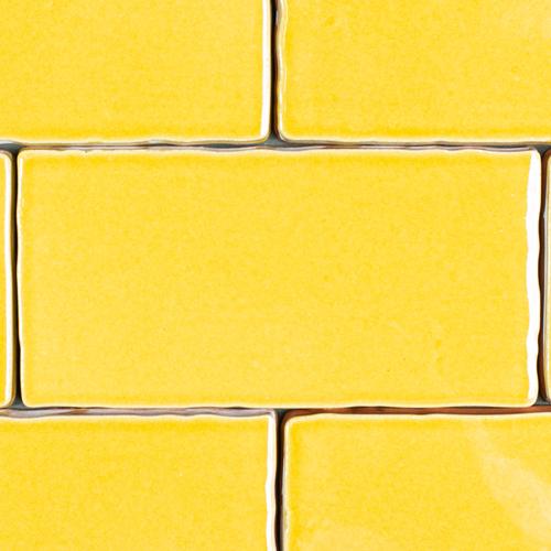 SAM Manual Mustard