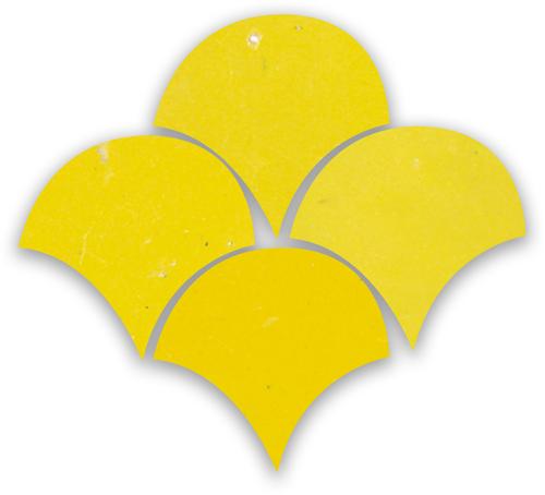 Zellige Citron Poisson Echelles 10x10cm